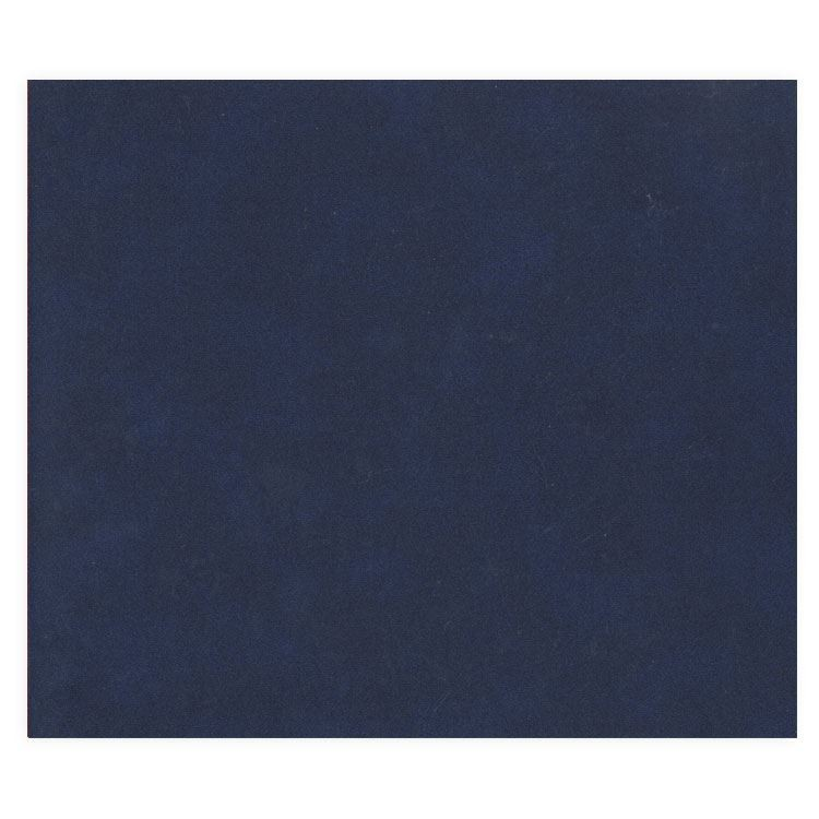 "ALB 490 Duo de couvertures d'albums ""Cuir Bleu"""